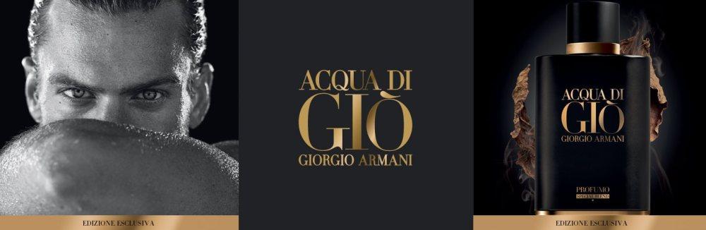 NƯỚC HOA NAM ACQUA DI GIO PROFUMO SPECIAL BLEND EDT 75ML CHÍNH HÃNG (Ý)